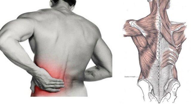 Dấu hiệu nhận biết cơ bản của bệnh viêm da cơ