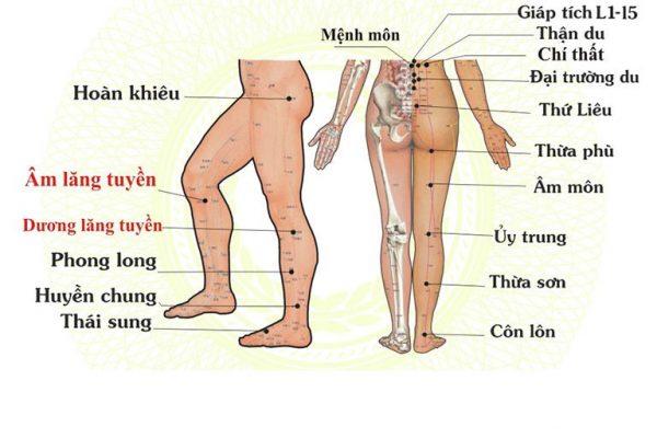 cách chữa đau khớp gối bằng bấm huyệt